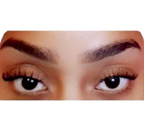 EyebroworEyelashesPost